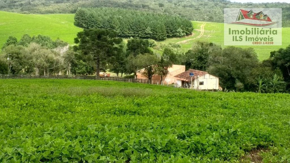 Fazenda Rural À Venda, Passa Dois, Lapa. - Fa0013