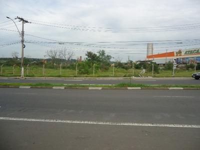 Terreno Comercial Em Campinas - Sp, Jardim Yeda - Te00012