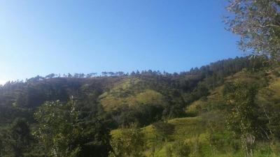 Coalicion Vende Finca 704 Tareas En San Jose De Las Matas