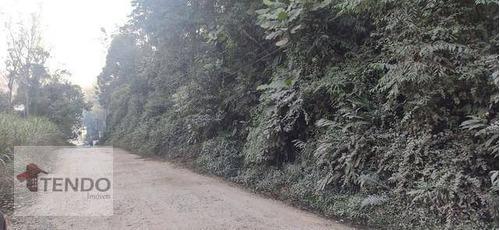 Imagem 1 de 15 de Terreno À Venda, 1800 M² Por R$ 122.000 - Vila Pereira Barreto (ouro Fino Paulista) - Ribeirão Pires/sp - Te0349