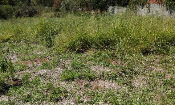 Terreno - Área Para Comprar Bairro Do Tanque Atibaia - Wim1270