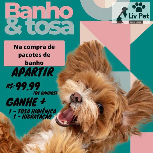 Banho E Tosa.