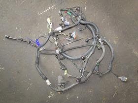 Chicote Do Motor C4 Hatch 2.0 16v 2011 Flex