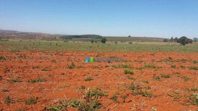 Fazenda Para Lavoura - 217 Ha - Piumhi (mg) - Cod Mta516