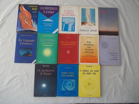 Livro Trigueirinho Lote Com 13 Títulos