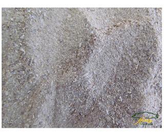 Farinha De Osso - Adubo Orgânico Cactos E Suculentas - 10 Kg