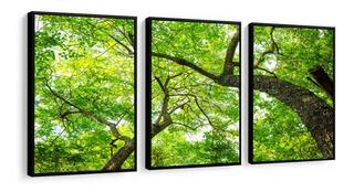 Quadro Decorativo Árvores Verdes Galhos Paisagem Sala 48x68