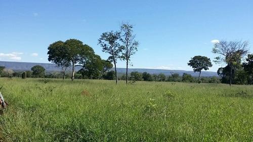 Fazenda A Venda Em Brasilândia, Santa Fé De Minas, Mg  Para Pecuária, Cana - 396
