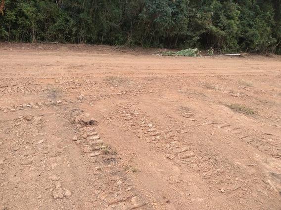 09c- Terreno Com Ótima Terra Para Plantação!