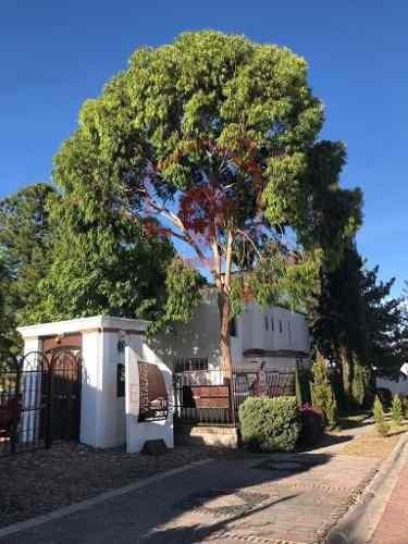 Casa En Venta Con Gran Jardín De 3 Hab En Balcones De Juriquilla