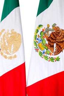 Bandera Mexico Bordada