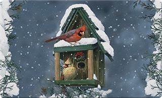 Toland Home Garden Cardenales En La Nieve 18 X 30 Pulgadas D