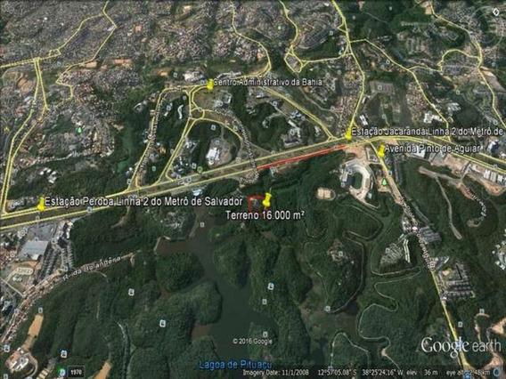 Terreno Fica Na Avenida Paralela - Tjn100 - 3056625