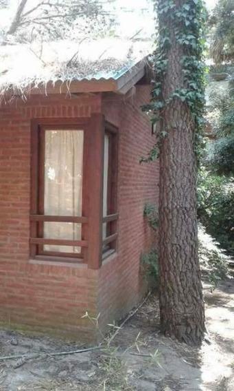 Casa En Alquiler En Mar De Las Pampas