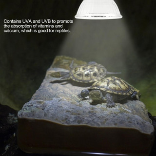 Foco Con Rayos Uvb + Uva Para Tortugas