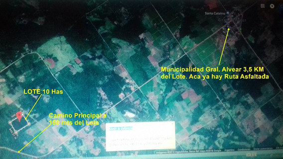 Chacra-campo 10 Hectareas Forestadas Con Agua Permanente
