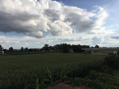 Terreno En El Chispiadero, Tepatitlán De Morelos