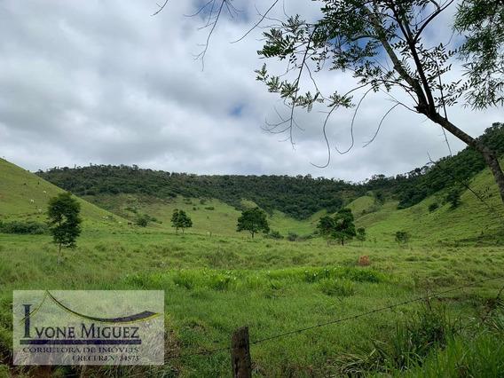 Fazenda Em Abarracamento - Rio Das Flores - 2882