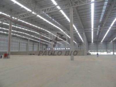 Galpao Industrial - Genipabu - Ref: 975 - L-975