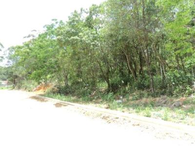Terreno Em Paisagem Casa Grande, Cotia/sp De 0m² À Venda Por R$ 125.000,00 - Te120535