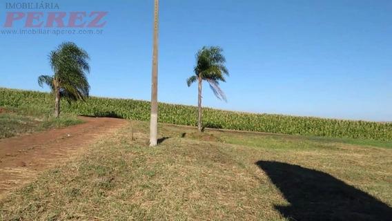 Chácaras_sítios_fazendas Para Venda - 13650.7159