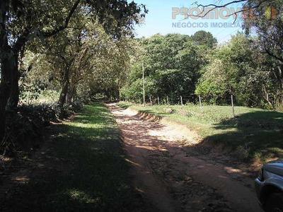 Sítio Rural À Venda, Caiacatinga, Porto Feliz. - Si0022
