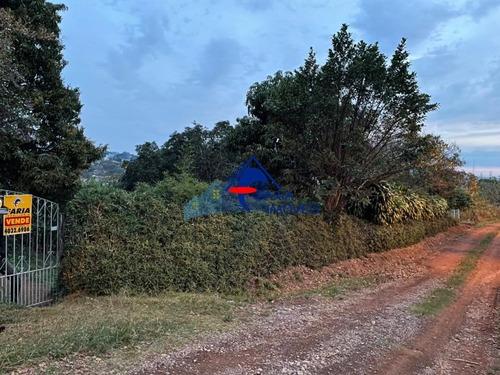 Imagem 1 de 2 de Terreno - Te92 - 69667071