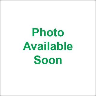 Neumático Trasero Dunlop American Elite 200 / 55r17 31ae-45