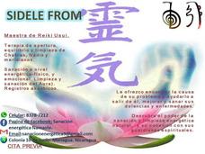 Maestra Reiki Usui. Sanación Y Limpieza Energetica