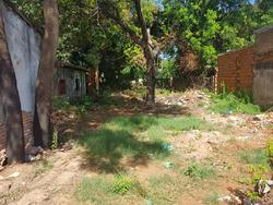 Vendo O Alquilo Terreno En Luque Centro. A1518