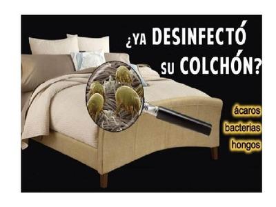 Lavado Desinfección Muebles Y Colchones