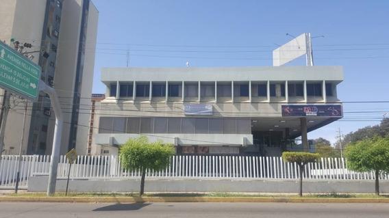 Local Comercial Alquiler C.c. Caypo Cecilio Acosta 30481