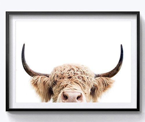 Hyd Art Highland Cow Farm Animal Canvas Art Wall Impresiones