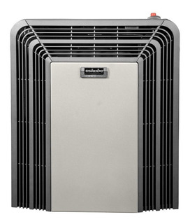 Calefactor Eskabe Titanio Tiro Balanceado 3000 K Termostato