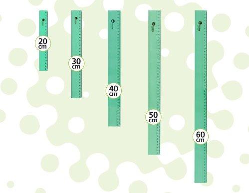 Regla 20cm Verde Pizzini 173220