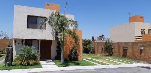 Casa Amueblada En Renta Puerta Real