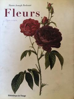 Libro Para Pintar Porcelana. Flores Y Mariposas.