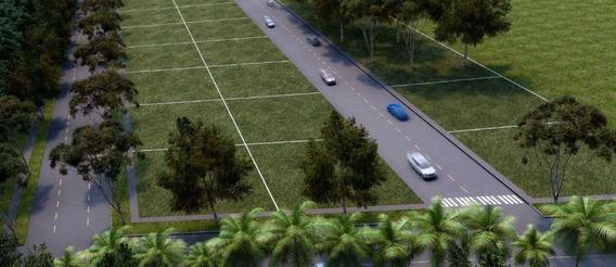 Desarrollo De Lotes De Inversion A Mediano Plazo En Tulum, Quintana Roo.