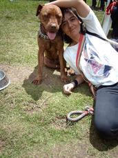 Paseos Caninos Y Guarderìa Canina