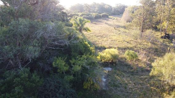 Fracción En Venta En Punta Indio