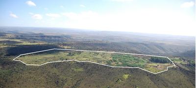 Fazenda 40ha - Plana - Margem Da Rodovia Br251
