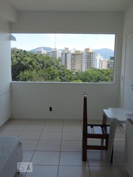 Apartamento Para Aluguel - Itacorubi, 1 Quarto, 18 - 893013932