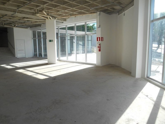 Loja - Santo Agostinho - Ref: 7447 - L-bhb7447