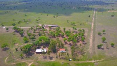 Fazenda A Venda Em Campo Grande - Ms (pecuária) - 993