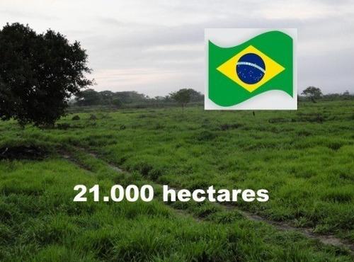 Fazenda Com 21.000 Hectares Em Corumbá - Ms