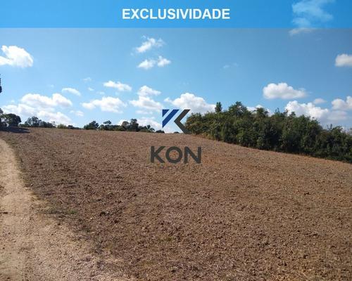 Imagem 1 de 16 de Área Industrial A Venda Em Araucária Pr - Te00004 - 68900873