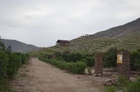Terrenos Campo Asia Coayllo
