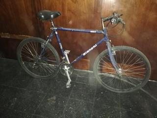 Mountain Bike Bianchi Ibex