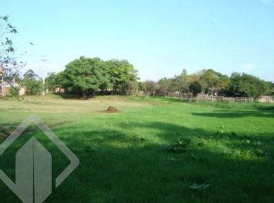 Terreno - Sitio Sobrado - Ref: 148802 - V-148802