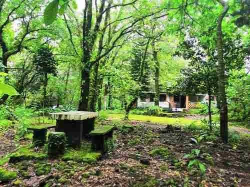 Bonita Casa E El Bosque En Renta Anual